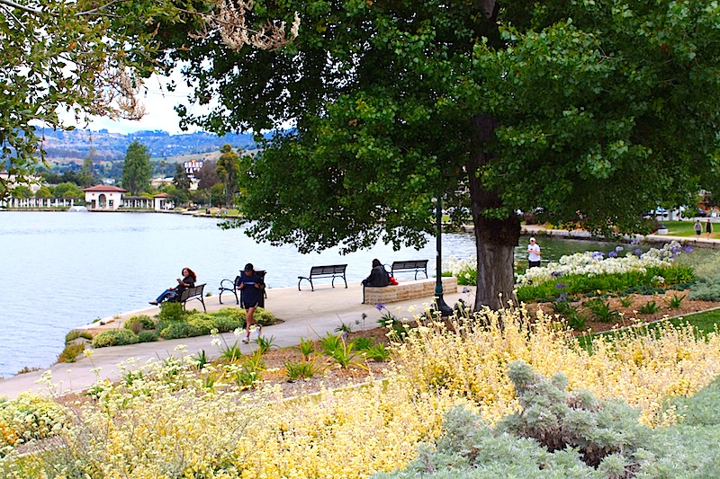 a view of Lake Merritt Park and scenery